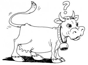 lembu-abunawas-kecil